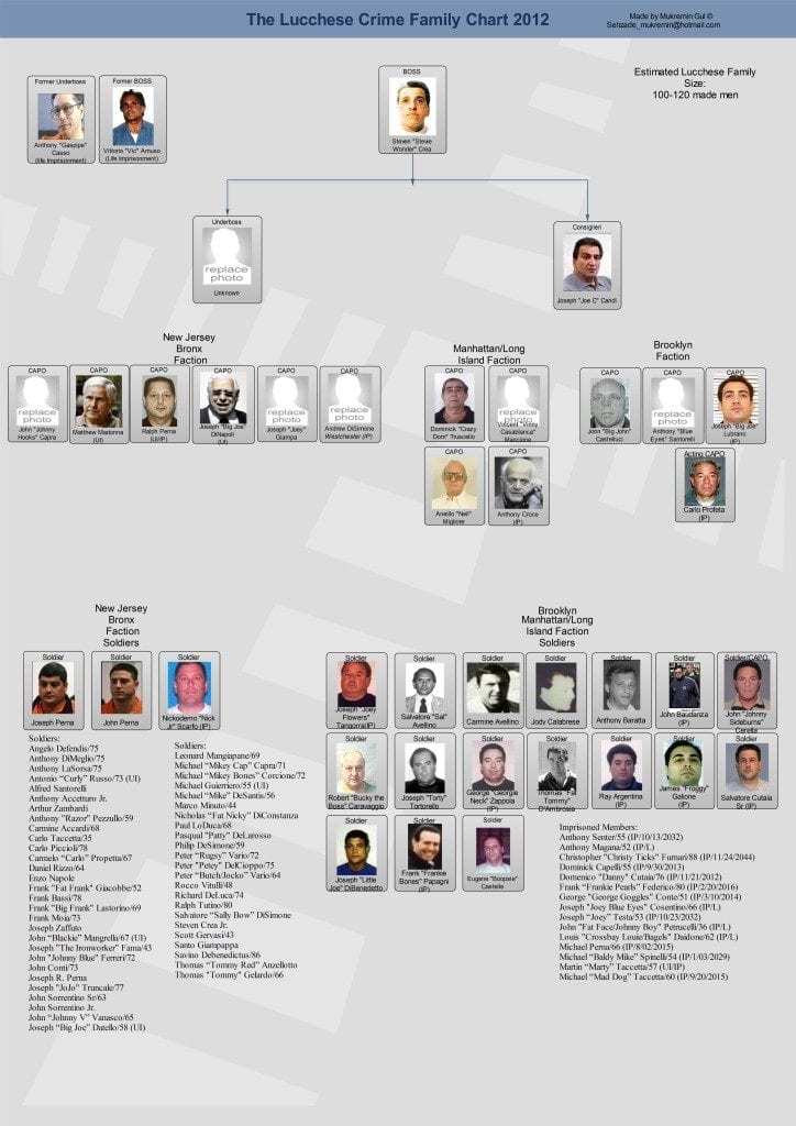 Lucchese-crime-family-tree-mobsters-mafia