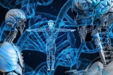 Human DNA and genetics as related to brain health